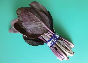 368.紫祭(紫小松菜)